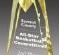 Gold Sculpted Star Award