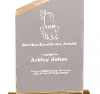 Reflection Gold Beveled Peak Award