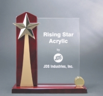 Rising Star2 Award