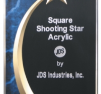 Shooting Star Blue Marble Award